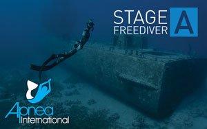 צלילה חופשית שלב א course image